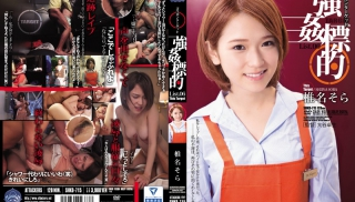 JAV Movie - DVD ID: SHKD-715 - Actors: Sora Shiina