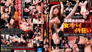 JAV Xvideos - DVD ID: DINB-003 - Actors: Monami Takarada