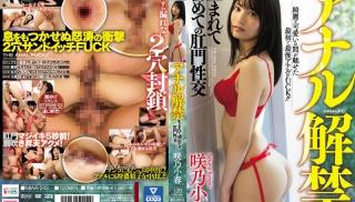 XXX JAV - DVD ID: MIAA-243 - Actors: Koharu Sakino